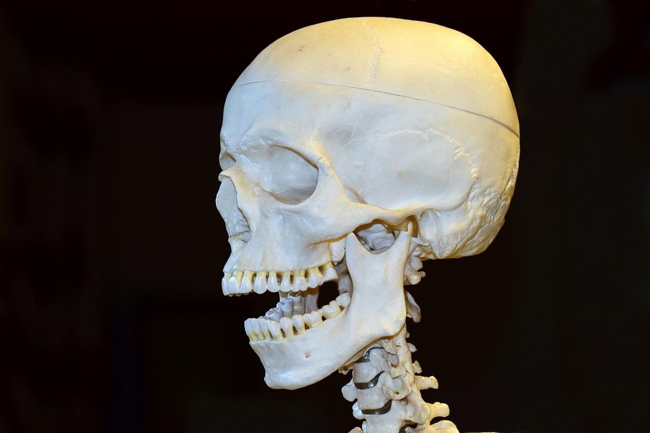 Kieferbruch Ursachen Symptome Behandlung
